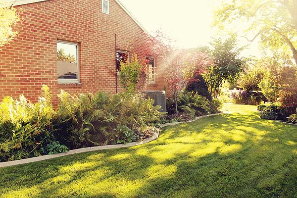 Mott's Landcaping maintenance-Hydrangeas