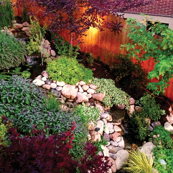 Mott's Landscaping-Backyard Pond.jpg