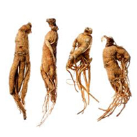 Ginseng herbal extract