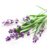 Lavender essential oil is best for blemished and sensitive skin.