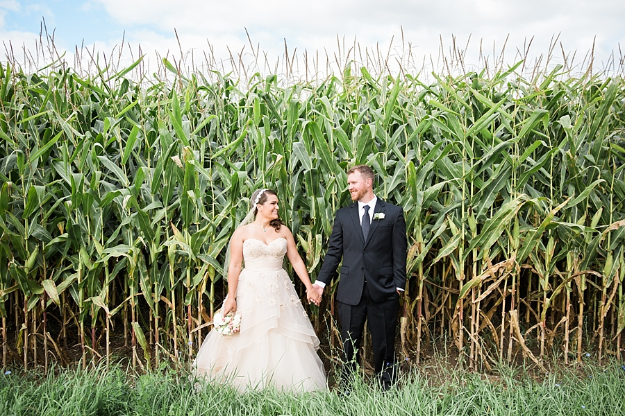 Michigan_Wedding_Photographer_Ann_Arbor_Arboretum_0047.jpg