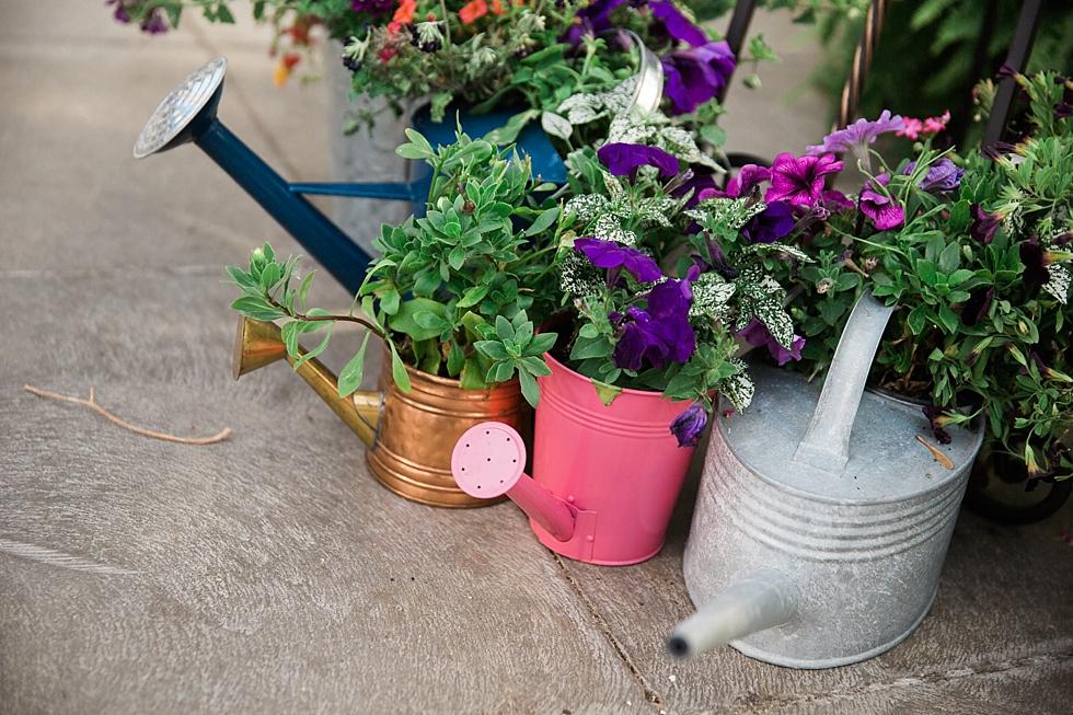 MSU_Horticulture_Gardens_Wedding_0065.jpg