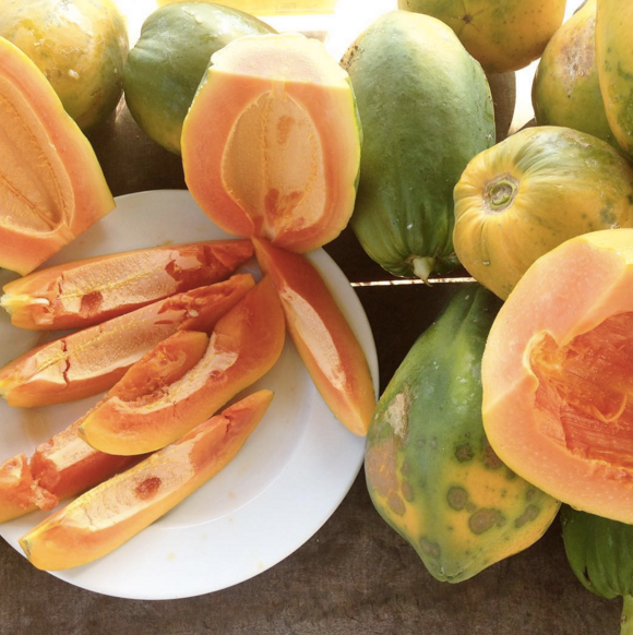 Hana Ranch_papaya.png