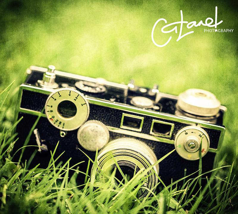 vintage1.jpg