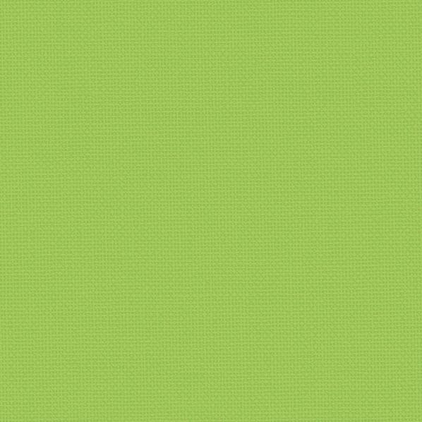 0101-893-kiwi-green.jpg