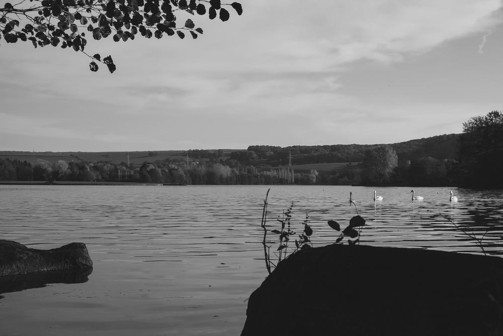 20131022 Echternach Lake - 2027.jpg