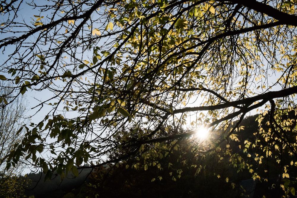 20131022 Echternach Lake - 2025.jpg