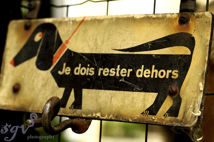 panneau_chien_web.jpg