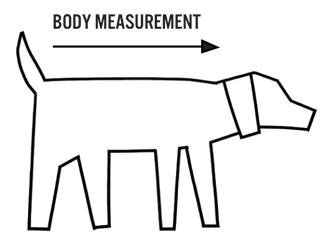 Final Size Chart