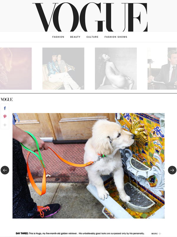 Vogue Leash.jpg