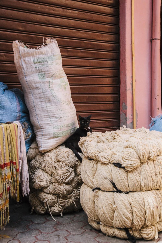 201303-Marrakech-024,xlarge.jpg