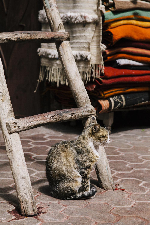 201303 Marrakech 002.jpg