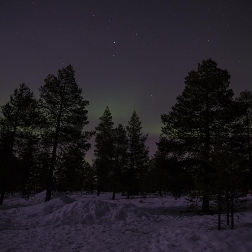 Rovaniemi 017.jpg