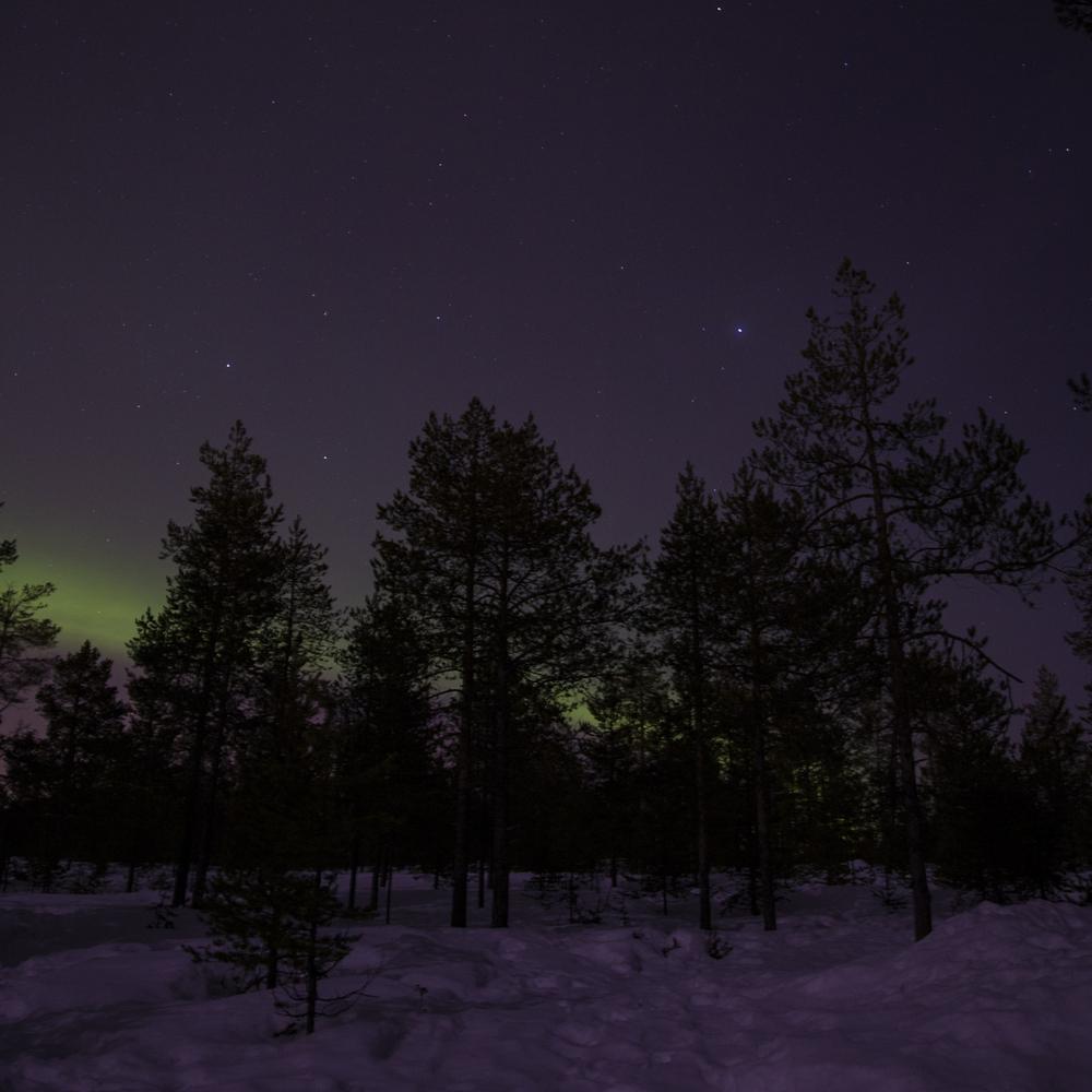 Rovaniemi 018.jpg