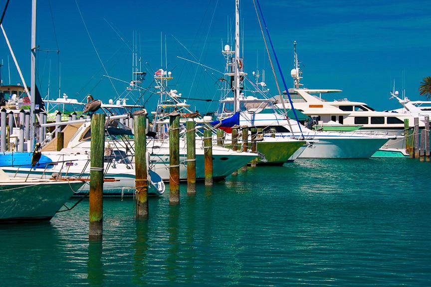 EdJohnston-Marina-Boats-0849w.jpg