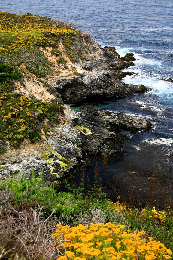EdJohnston-Pacific-Coast-Highway-8487w.jpg