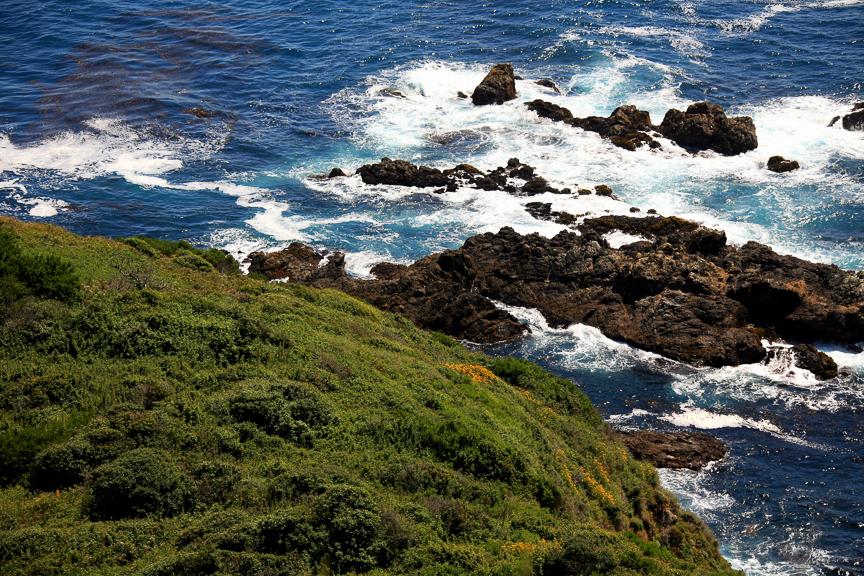 EdJohnston-Pacific-Coast-Highway-8514w.jpg