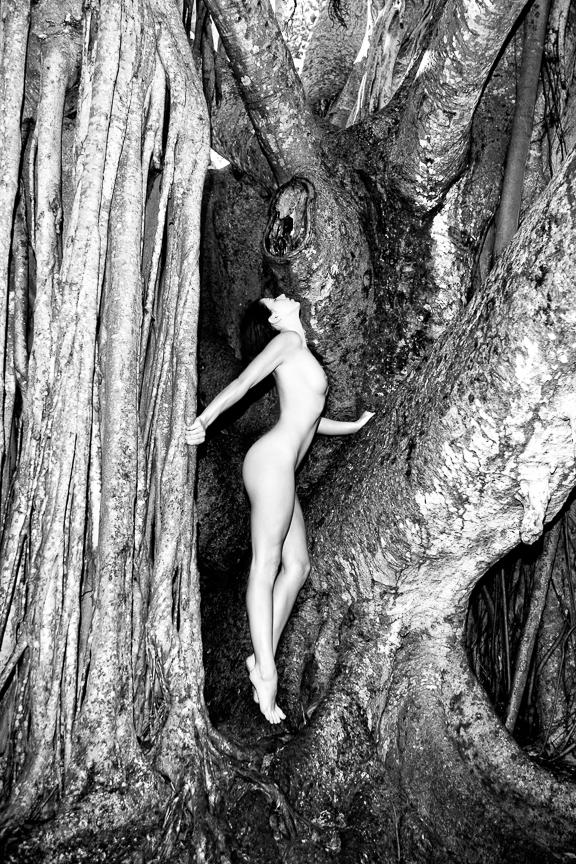 Ed-Johnston-Simple-Nude-Girl-With-Banyan-Tree-BW-0571w.jpg