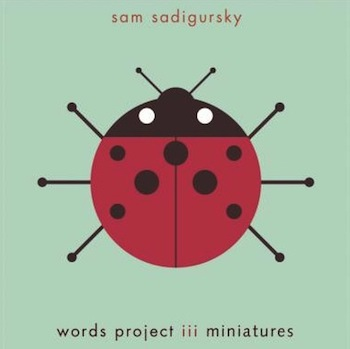 Sam Sadigursky<br><i>Words Project III</i>