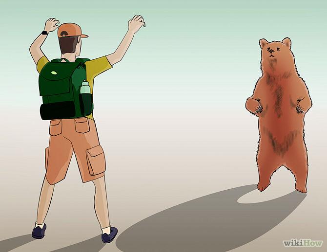 Fight Back against a Bear (Market)