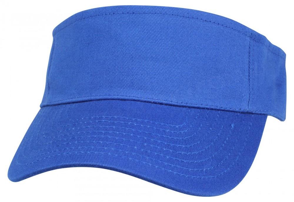blue visor.JPG