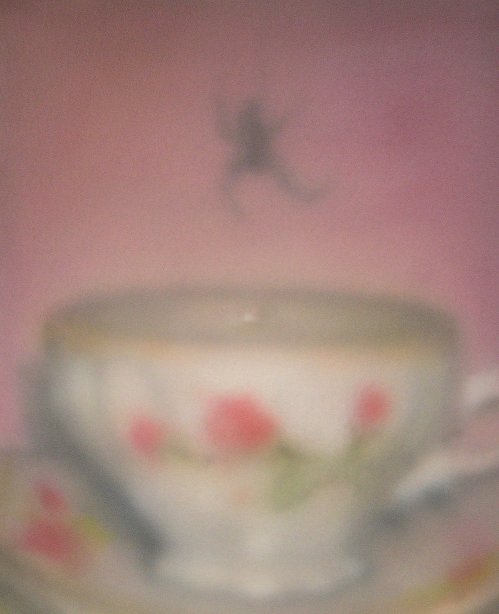 Spider Looking at its Reflection in a Lightly-Brewed Cup of Tea