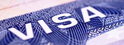 Image result for u visa