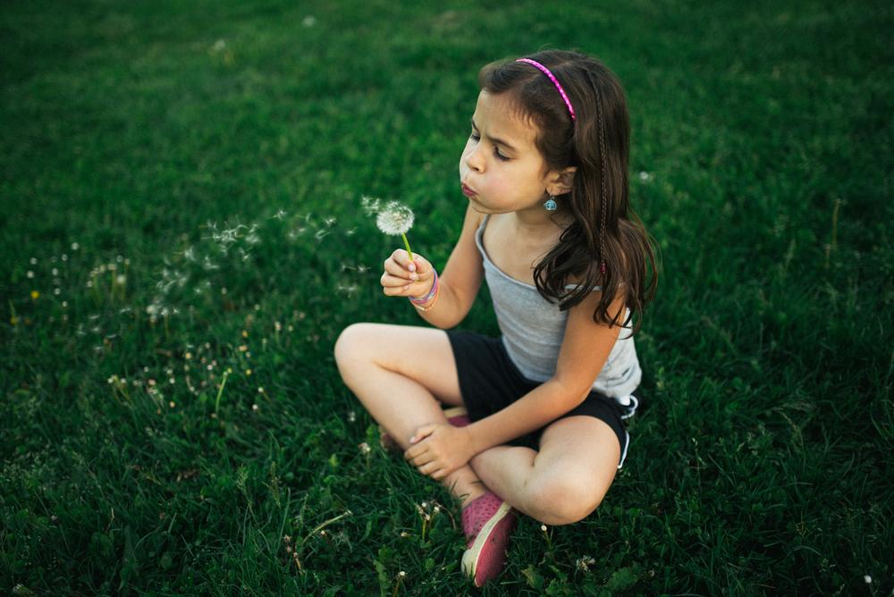 dandelions (16 of 18)_1.jpg