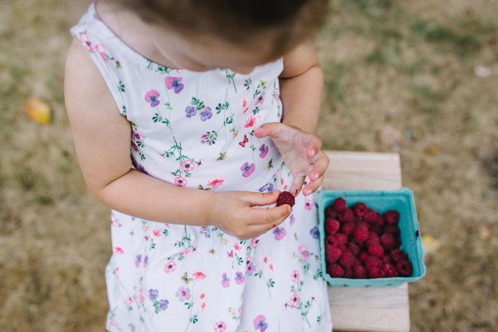 raspberries3.jpg