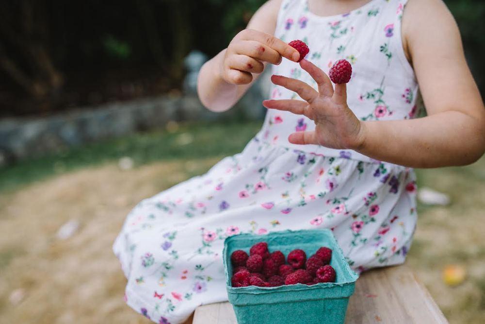 raspberries4.jpg