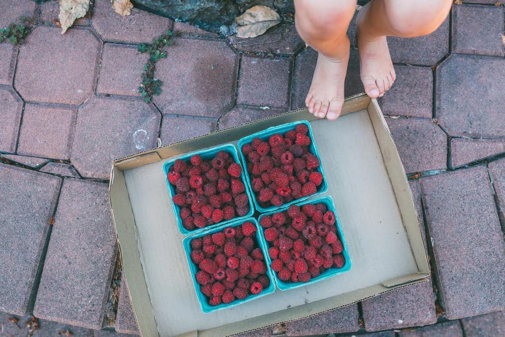 raspberries5.jpg