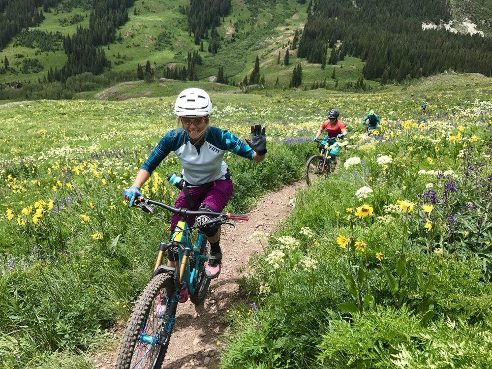 Wildflower bills on Mount Teocalli trail.