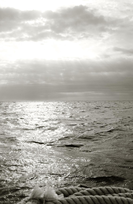 water_lookbook.jpg