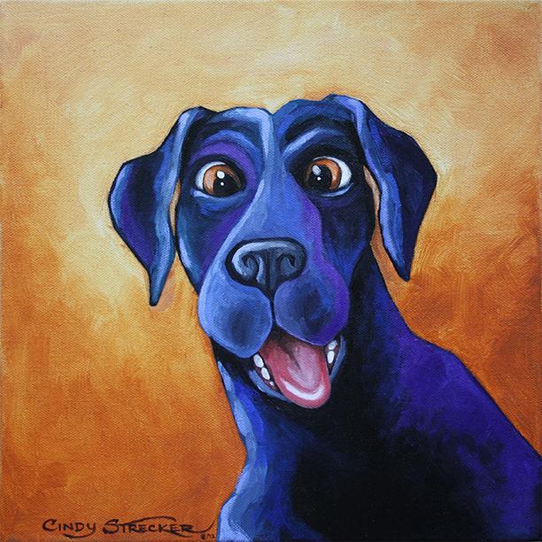 Jake  by Cindy Strecker
