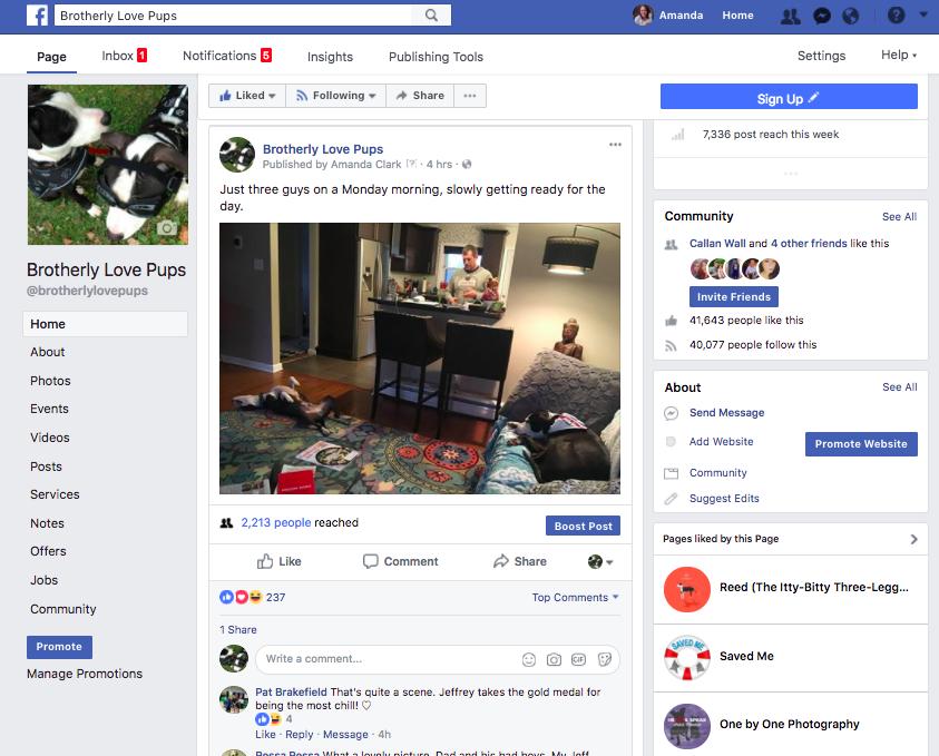 blp-facebook.png