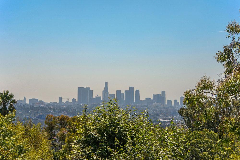 downtown-view.jpg