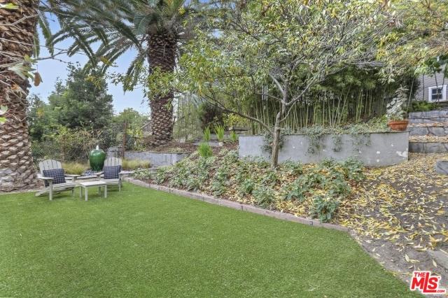backyard2.jpg
