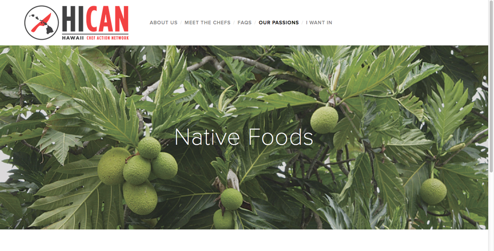 www.hi-can.org  Client: Hawaii Chefs Action Network Product: Web Design
