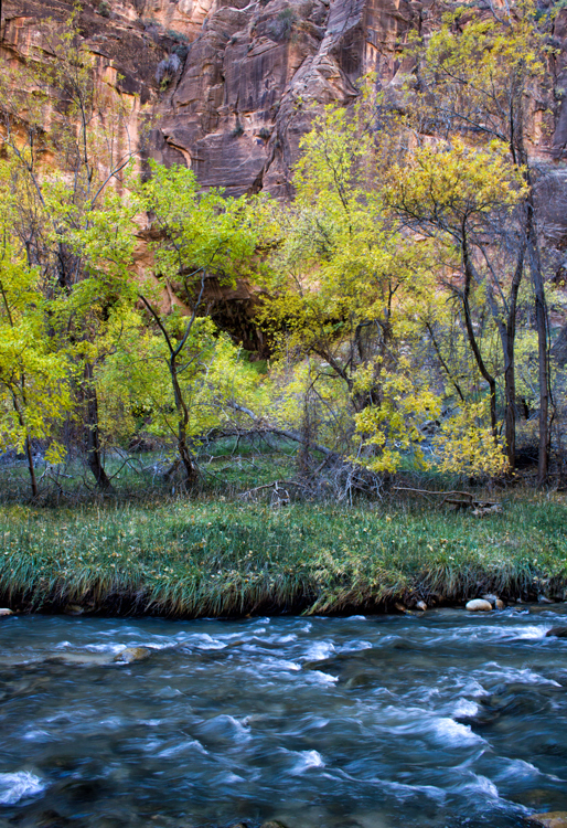 Virgin River, Zion NP, Utah