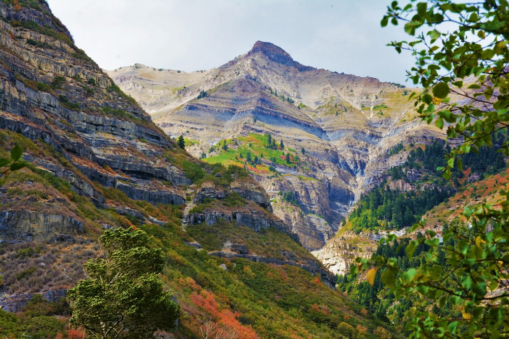 The view of Provo Canyon from the falls