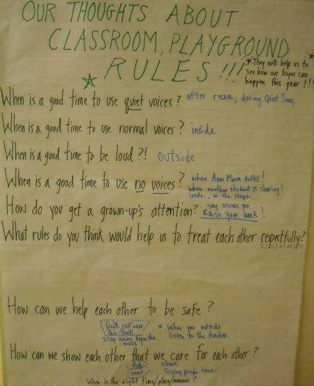 Class Brainstorm_Teacher Facilitated_Thoughts about Rules