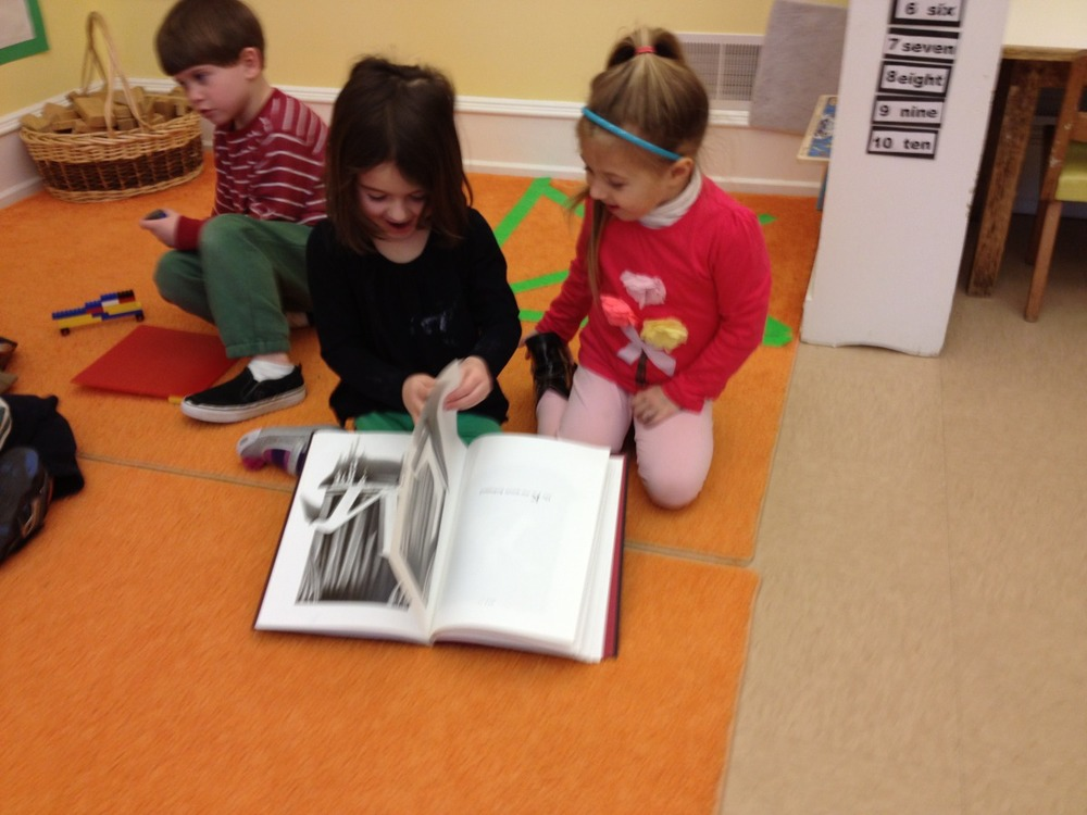 "reading ""The Z was Zapped"""