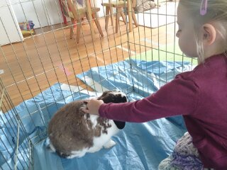 Oscar is a great pet and seemed to enjoy the special attention.