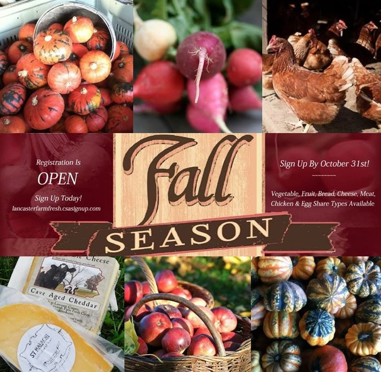 Sign-up for the Chadds Ford location to pick-up right at Fairville! Link to 2014 Fall Application: http://lancasterfarmfresh.csasignup.com/ And it's ON! Now featuring our Fantastic Flavors of Fall- starring our organic vegetables, fruit, local cheese, pasture-raised meat and chicken, slow-risen bread, andsunny-yolked eggs. Register Now! Full-season registration ends October 31st. Link to Map of CSA Sites: https://mapsengine.google.com/map/viewer?mid=zLcMpuwLfzWk.kefd16NiQgRY This season runs from November 10th-December 24th, for a total of 7 weeks.