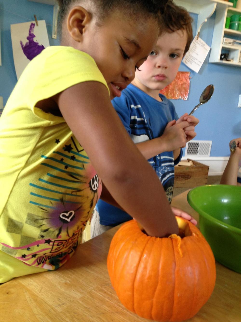 Looking for Seeds Inside a Pumpkin