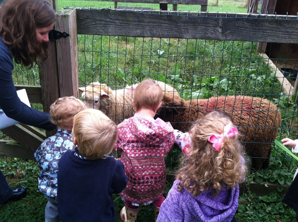 Our Preschool Playtime friends visiting the sheep.  So sweet!