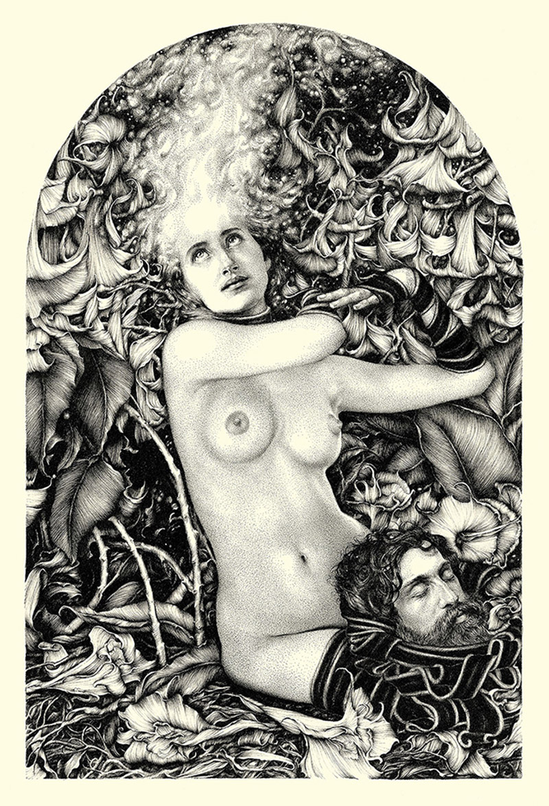 Salomé 2013 - Ink on cotton paperby Lucy Hardie