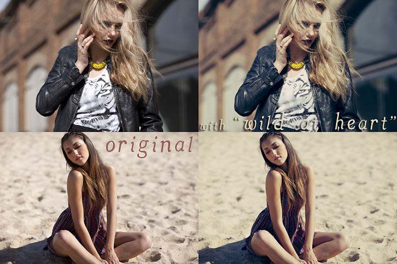 free photoshop curve 8.jpg