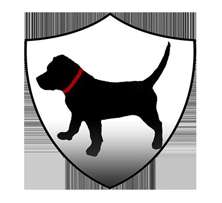 VCWatchdog web.png