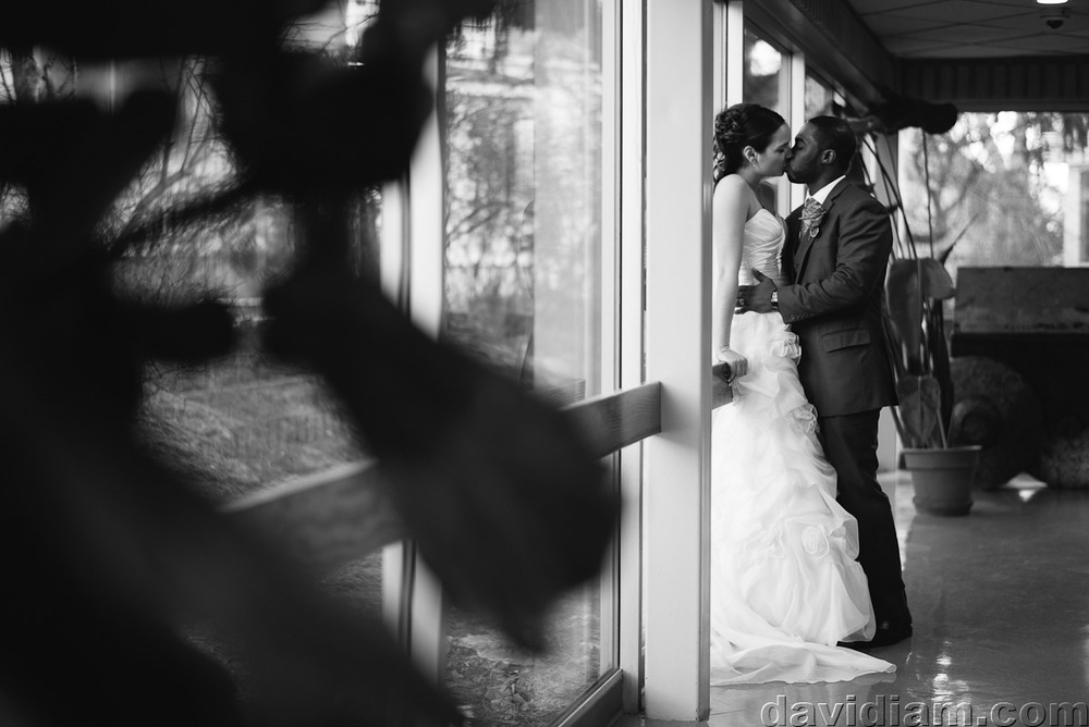 Burlington-Wedding-Photographer-Carmens-Hamilton-Photography-041.jpg
